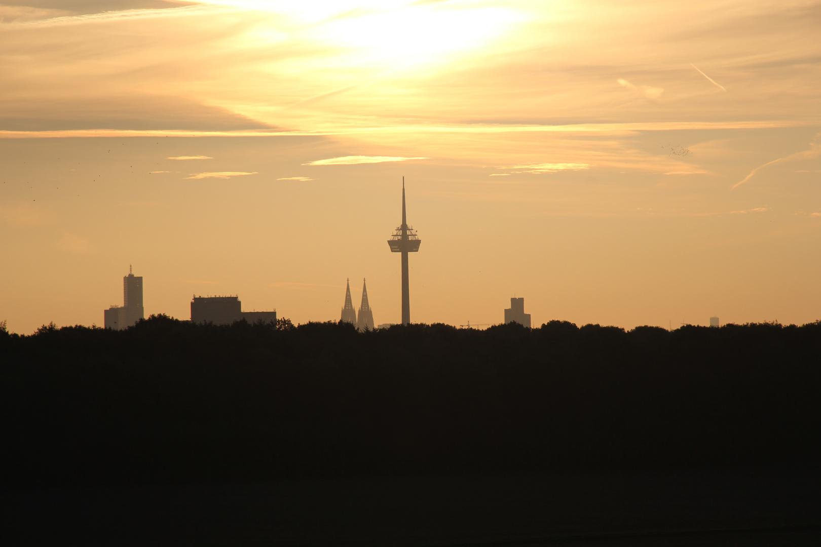Herbst vor Köln
