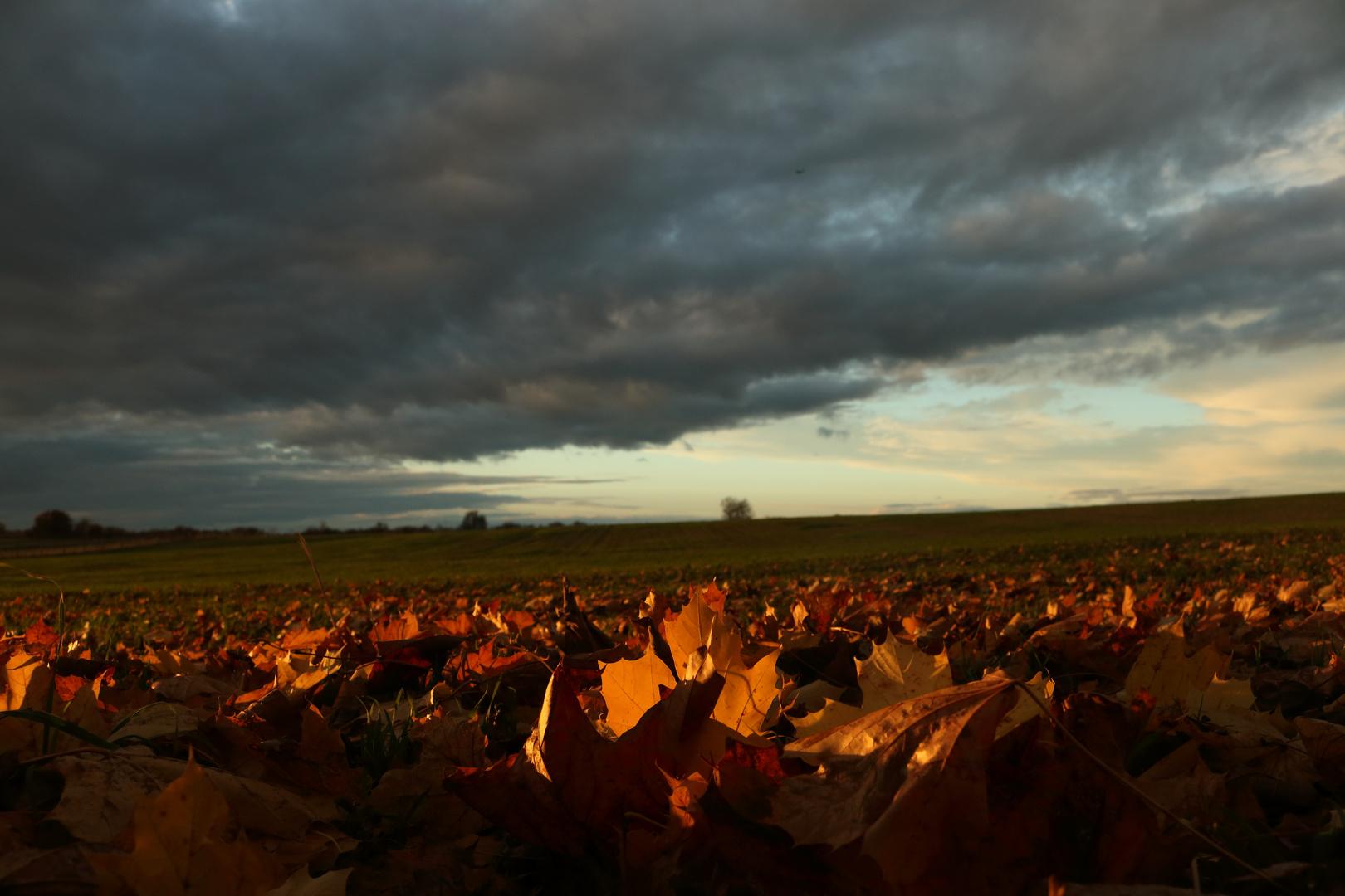 Herbst- Wetter