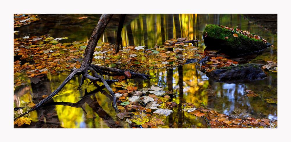 Herbst wie ich ihn mag...