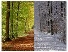 Herbst & Winter