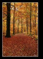 [ Herbst_2 ]