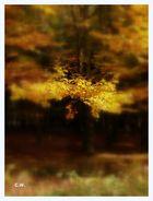 ...Herbst...>2<...