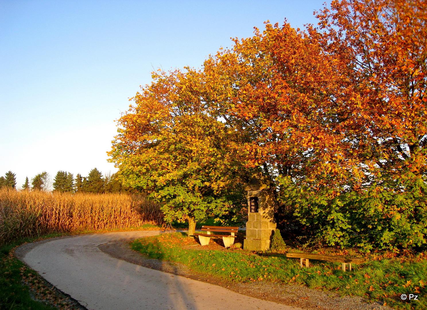 Herbstabend ...