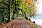 Herbstallee am Herthasee