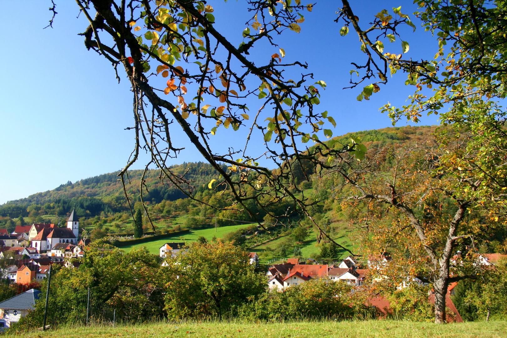Herbstamfang