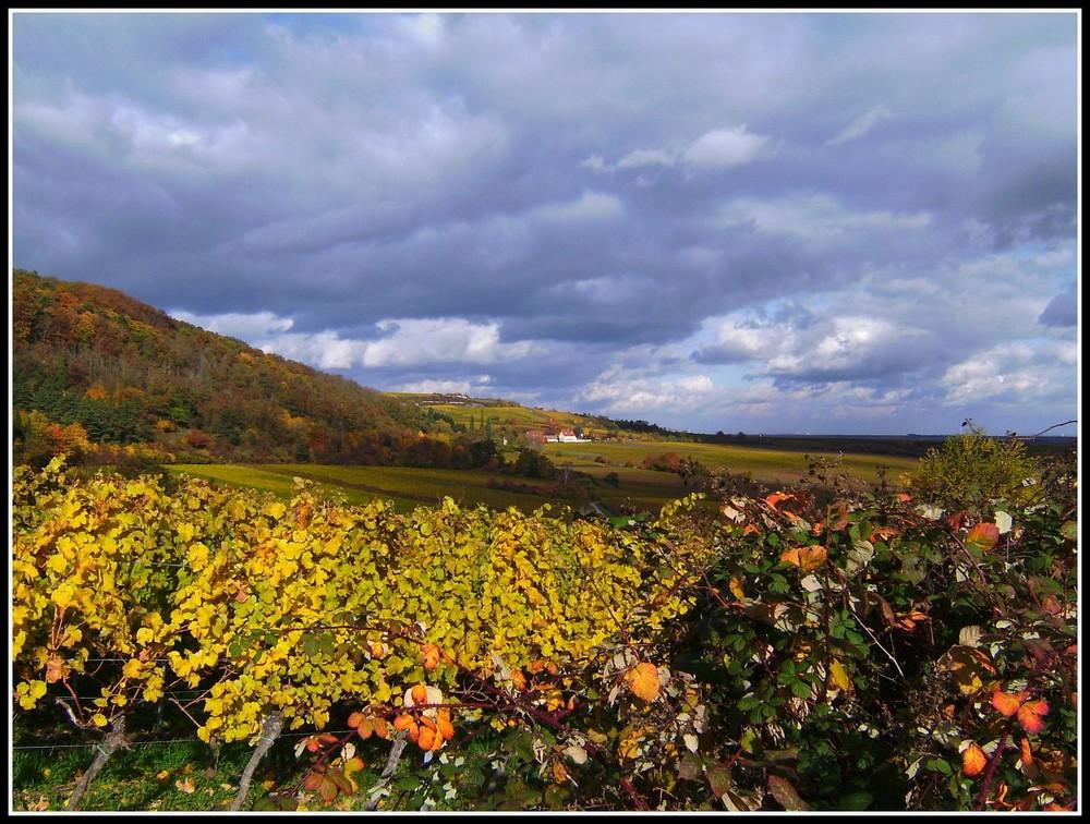 Herbstausblicke (..impessionen, Part drei)