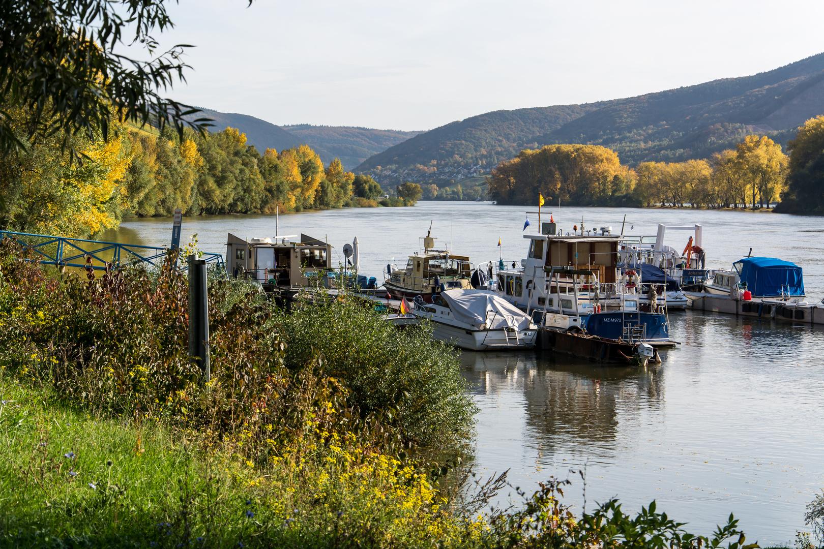 Herbstausflug in den Rheingau (1)