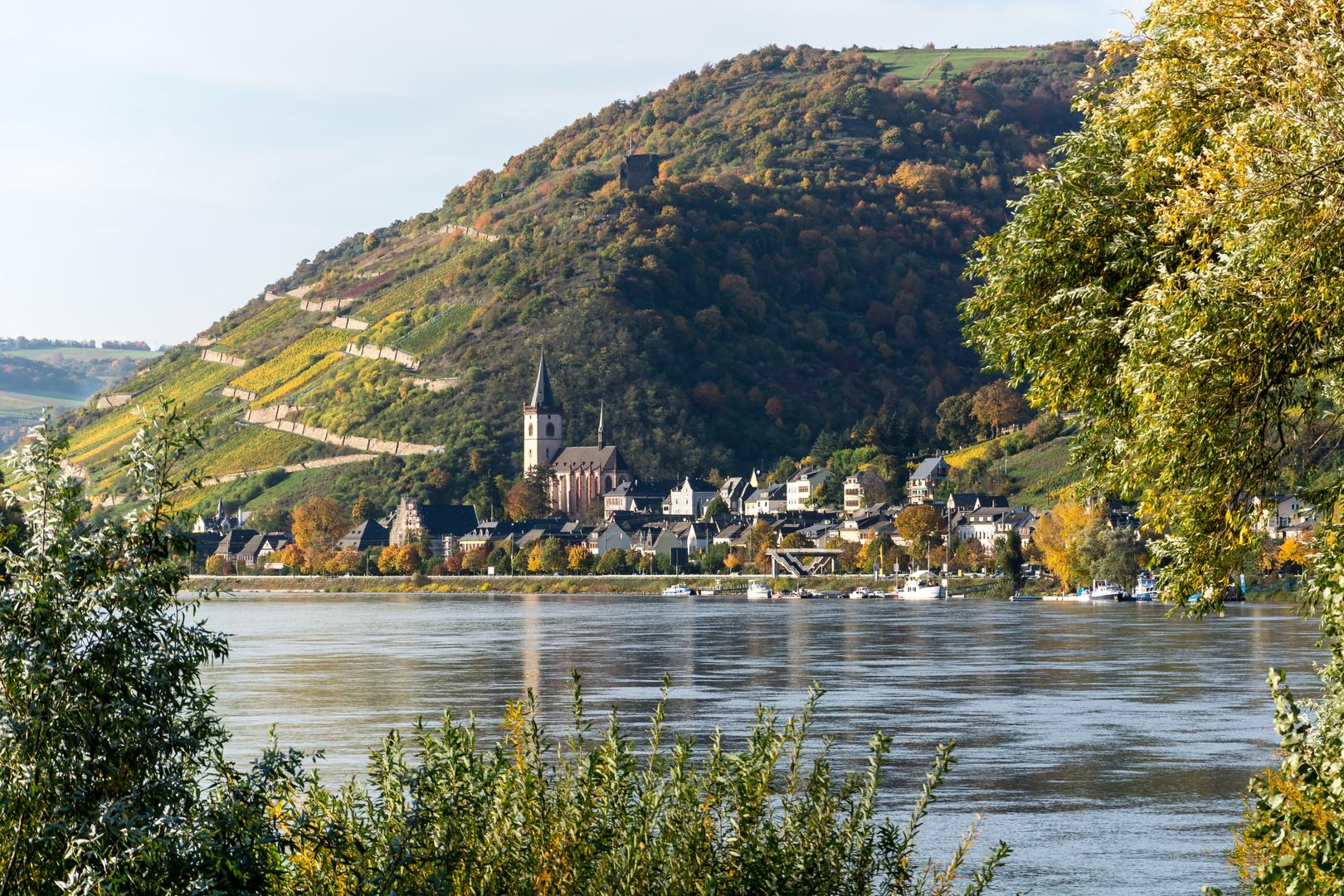Herbstausflug in den Rheingau (10)