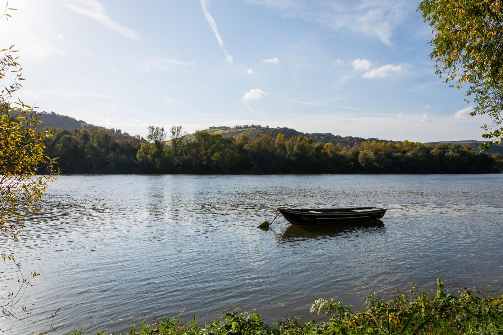 Herbstausflug in den Rheingau (4)