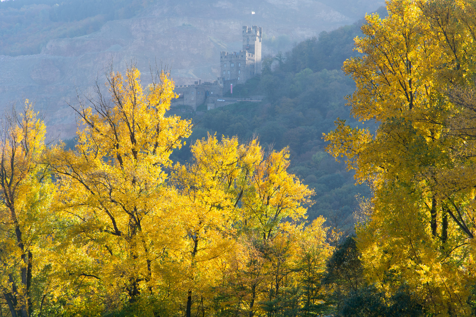 Herbstausflug in den Rheingau (7)