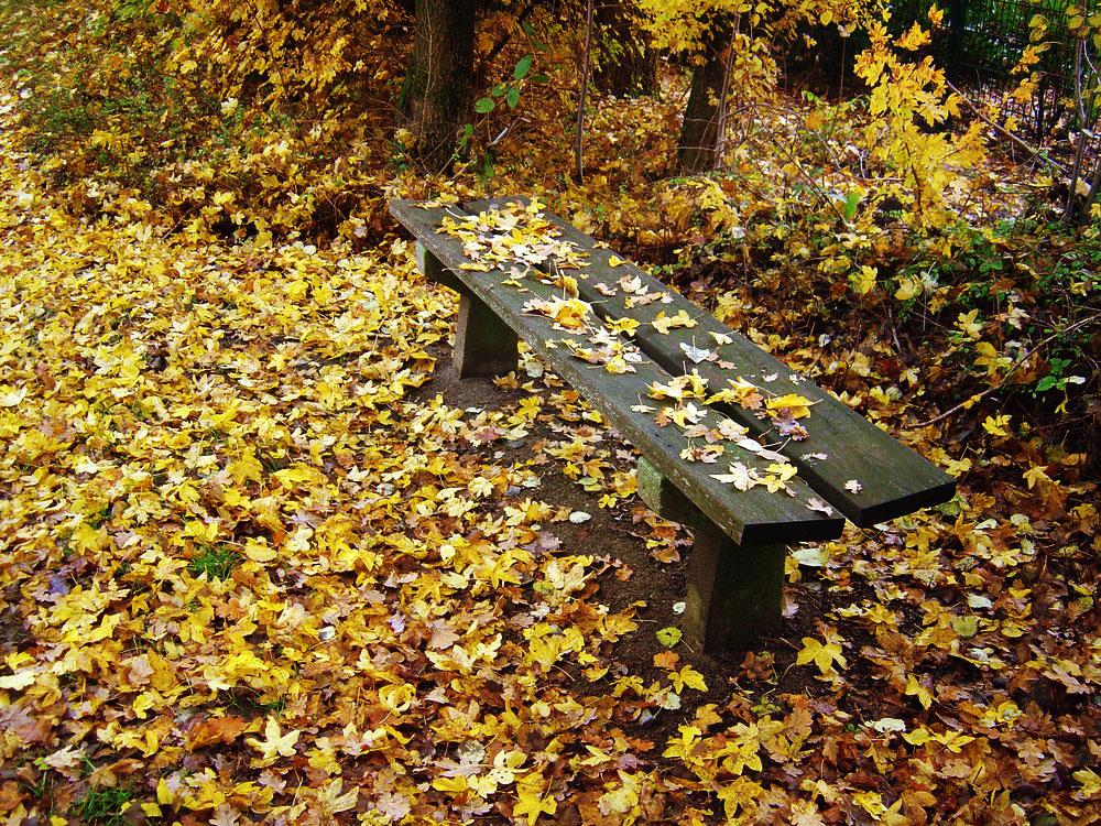 Herbst,Bank...