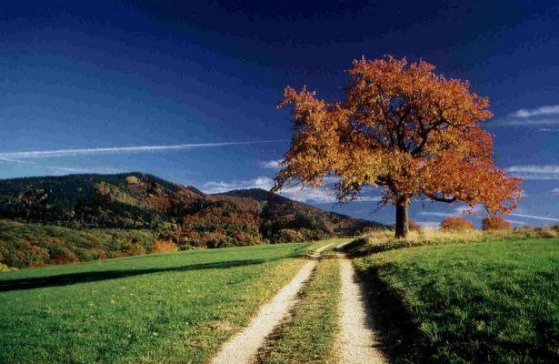 Paesaggi immagini e foto for Paesaggi naturali hd