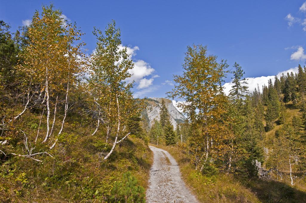Herbstbeginn in den Bergen - 2