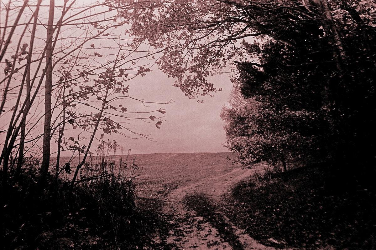 Herbstbeginn in der Landschaft - die kommende Trostlosigkeit