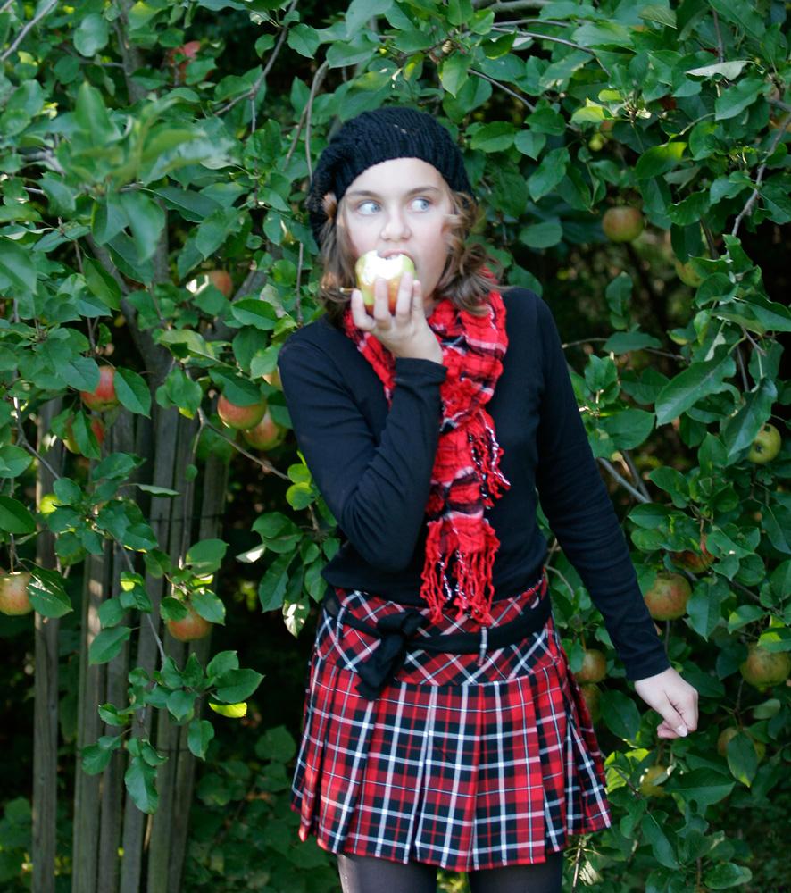 Herbstbilder 3