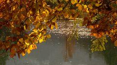 Herbstblätter mit See