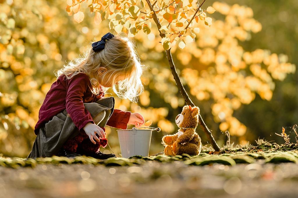 ...Herbstblättersammlung...
