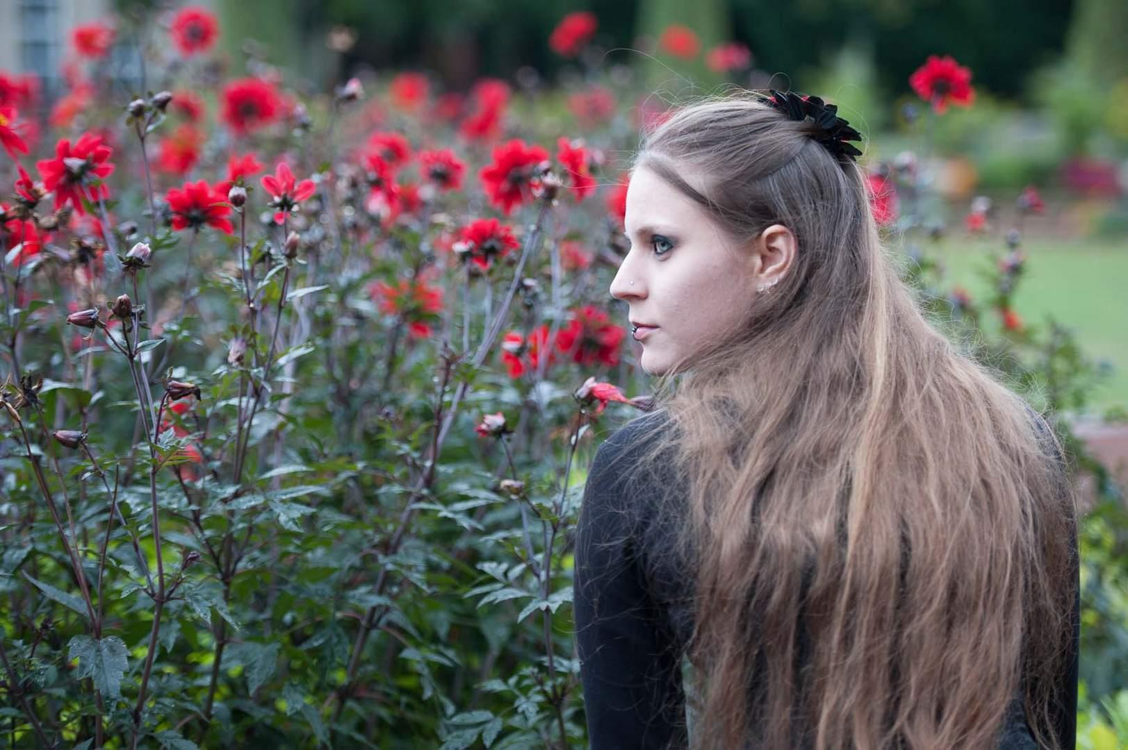 Herbstblumen