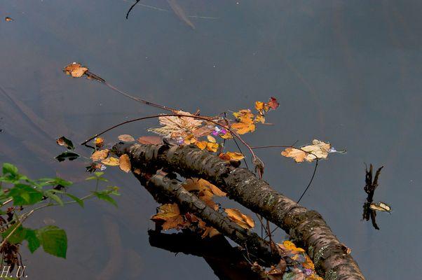 Herbstboten