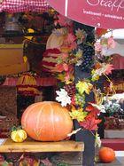 Herbstdeko auf den Stuttgarter Weindorf
