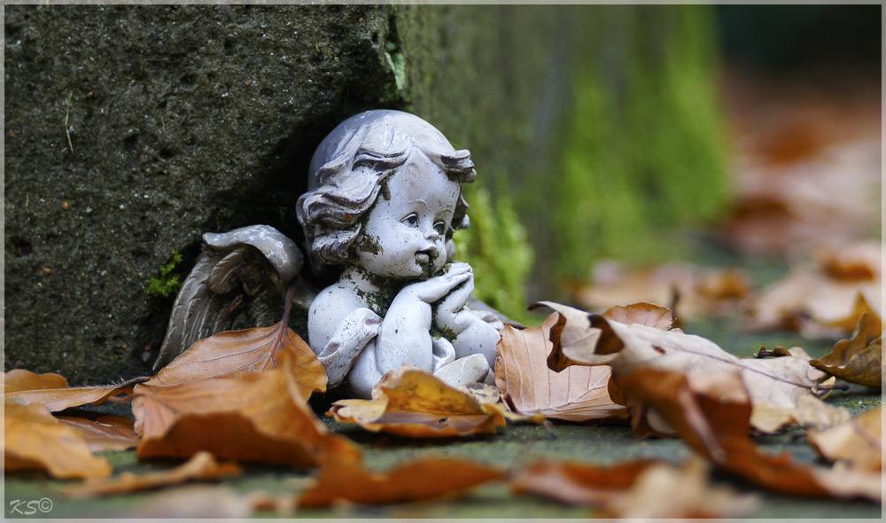 HerbstEckenEngel
