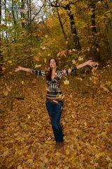 Herbsteindrücke 2012