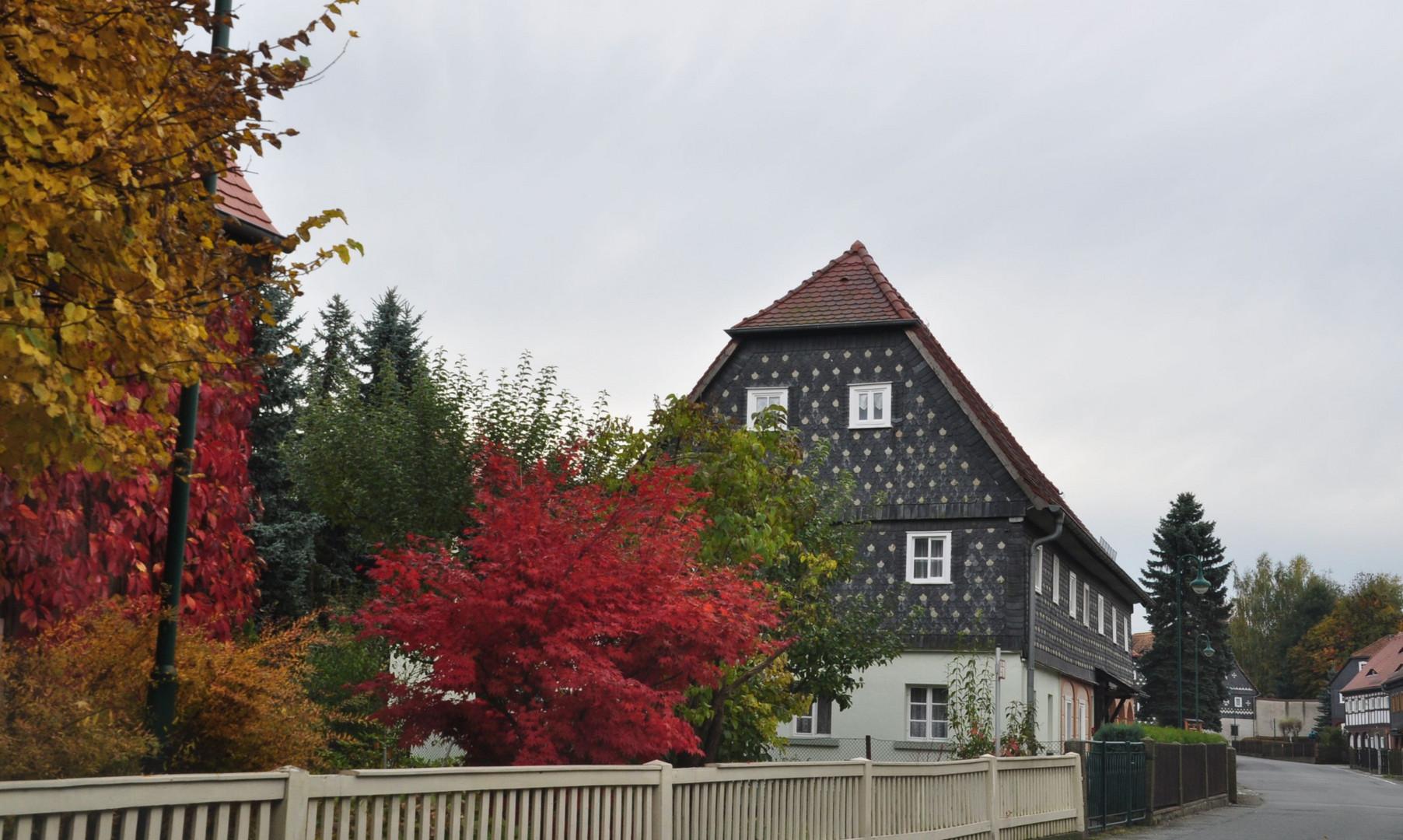 Herbsteindrücke 2013 3