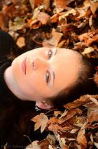 Herbstengel