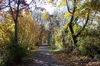 Herbsterinnerungen 1