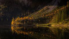 Herbsterwachen