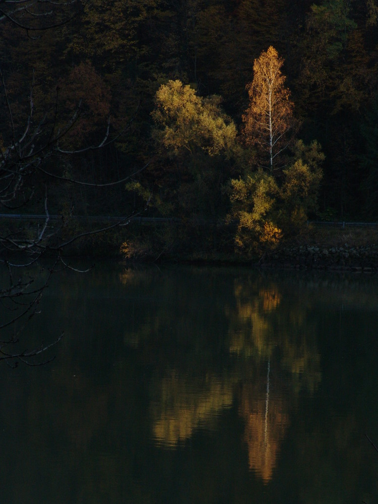 Herbstfackel