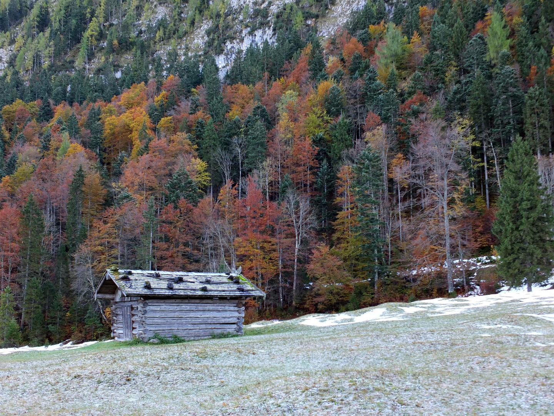 Herbstfärbung am Ferchensee