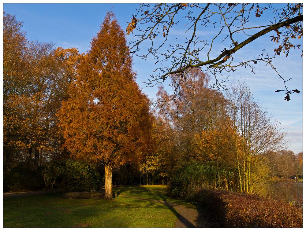 >> Herbstfärbung