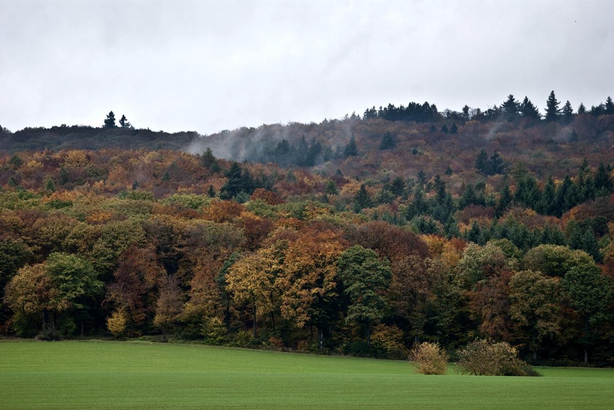Herbstfarben 2013_03