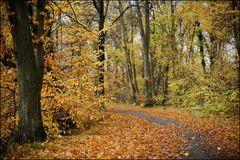 [ Herbstfarben ]