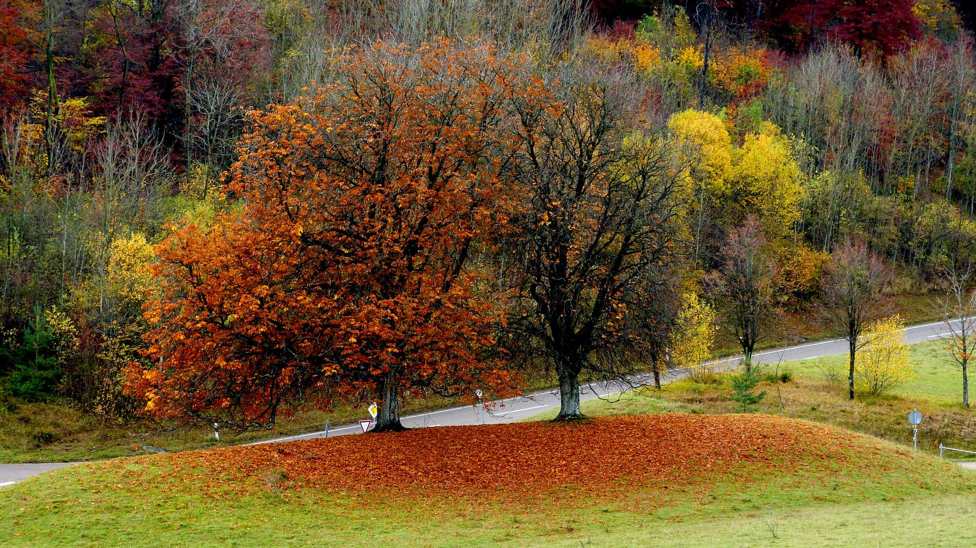 Herbstfarben 27