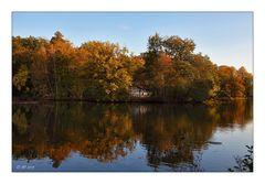 Herbstfarben - 7