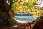 Herbstfarben !