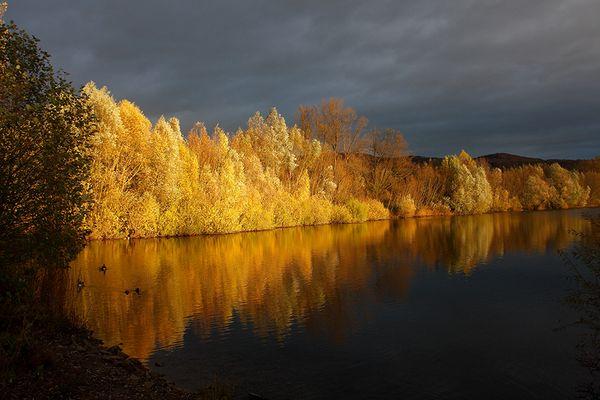 Herbstfarben am Bruchsee