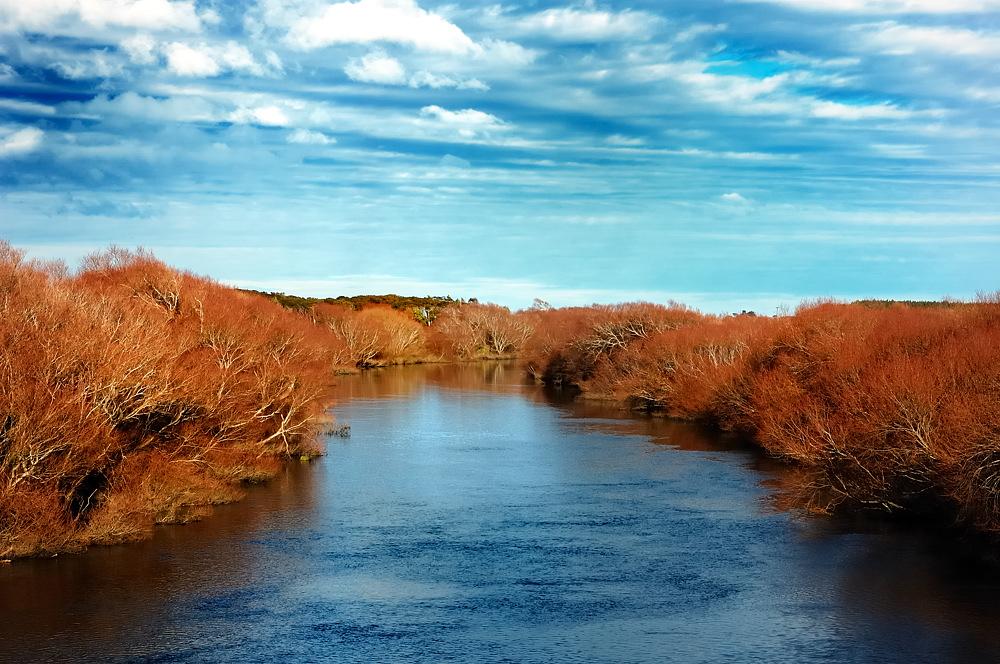 Herbstfarben am Fluss