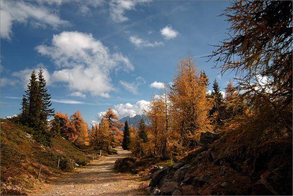 Herbstfarben am Hochstein II