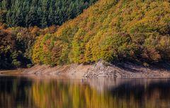 Herbstfarben am Rur-Stausee