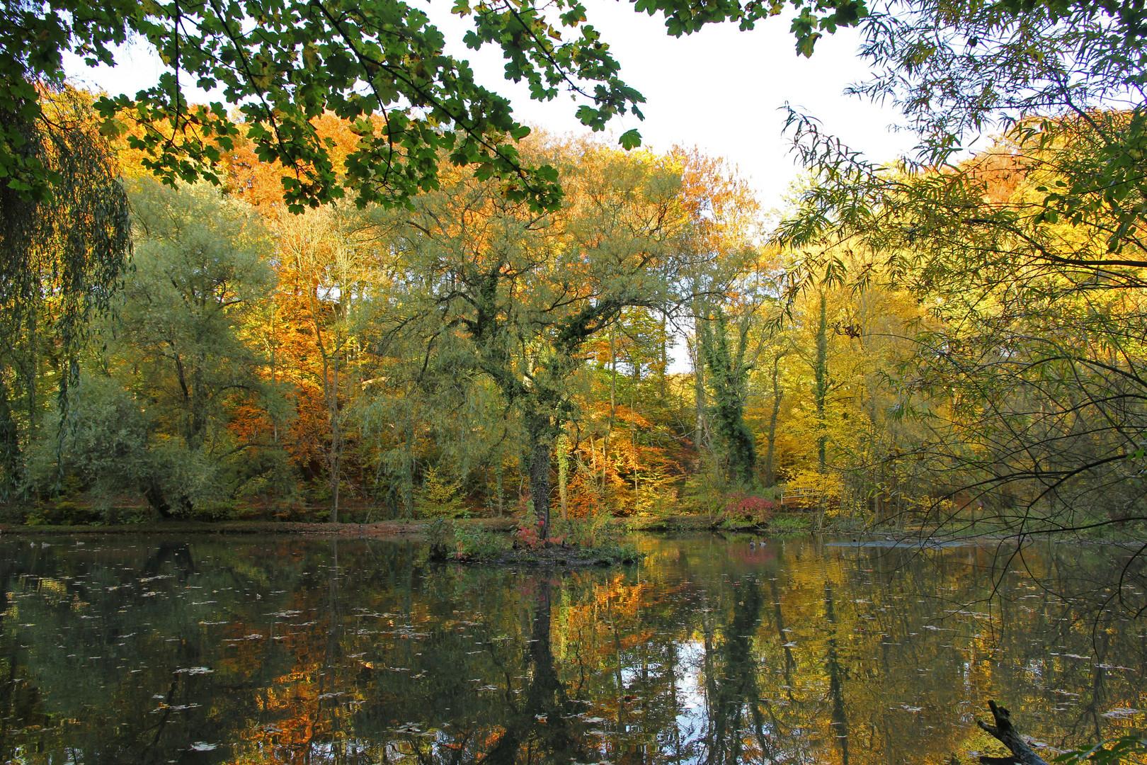Herbstfarben an der Auermühle in Ratingen