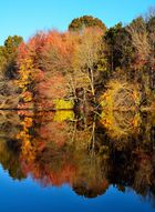 Herbstfarben an einem See in Massachussetts (2)