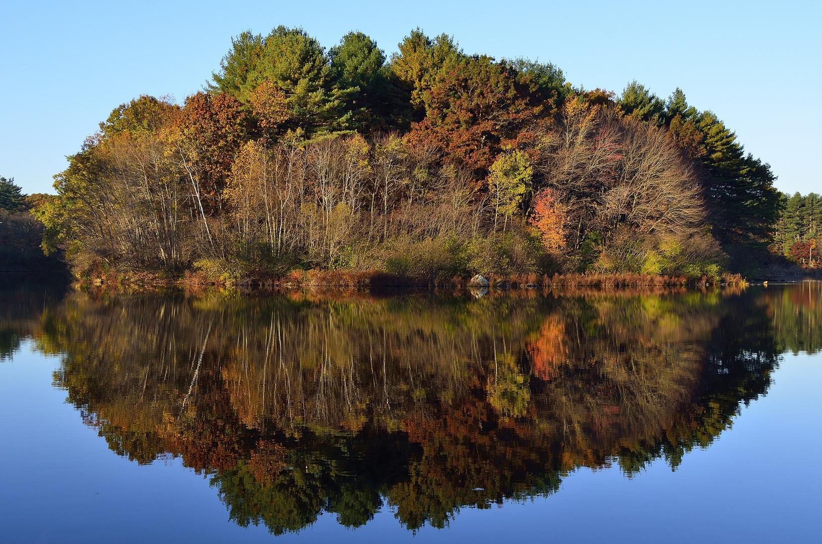 Herbstfarben an einem See in Massachussetts (3)