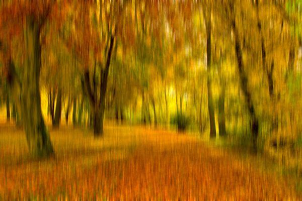 Herbstfarben (autumn colours)