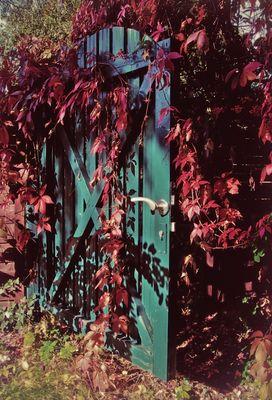 Herbstfarben - Das Gartentor