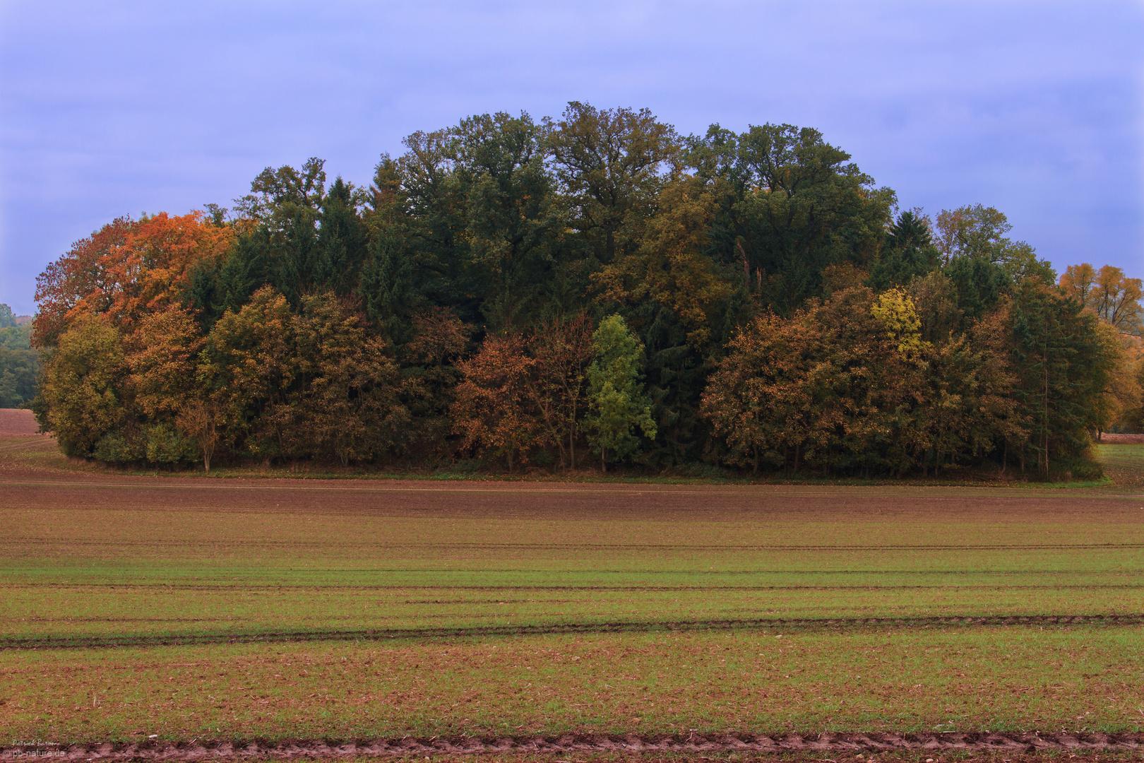 // Herbstfarben