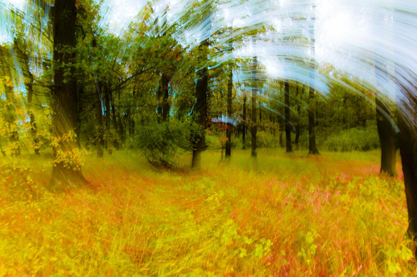 … Herbstfarben gefunden!