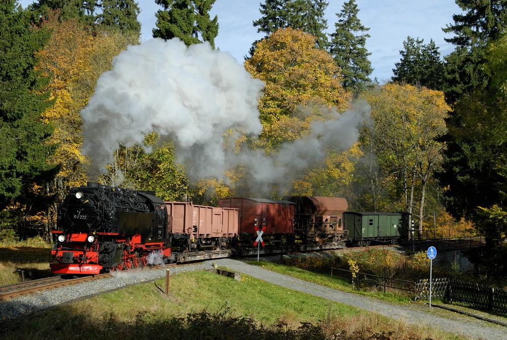 Herbstfarben im Harz